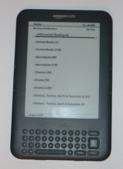 The Kindle Keyboard lets you organize your books in collections. The Kindle Fire does not.